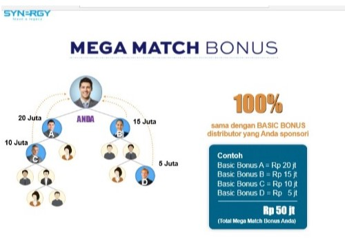 Bisnis online synergy